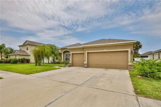 202 Orange Mill Avenue, Ruskin, FL 33570 (MLS #T3176441) :: Dalton Wade Real Estate Group