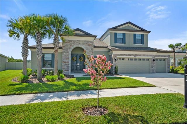 21978 Butterfly Kiss Drive, Land O Lakes, FL 34637 (MLS #T3176447) :: The Duncan Duo Team
