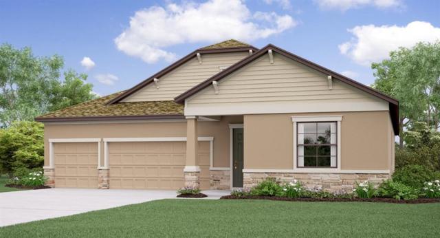 2751 Hilliard Drive, Wesley Chapel, FL 33543 (MLS #T3176453) :: Jeff Borham & Associates at Keller Williams Realty