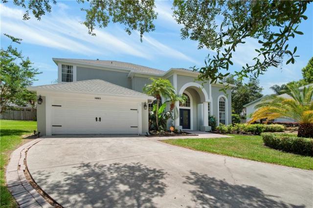 16003 Ridley Place, Tampa, FL 33647 (MLS #T3176484) :: Team Bohannon Keller Williams, Tampa Properties