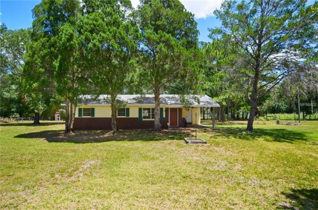 28443 Sonny Drive, Wesley Chapel, FL 33544 (MLS #T3176489) :: Team 54