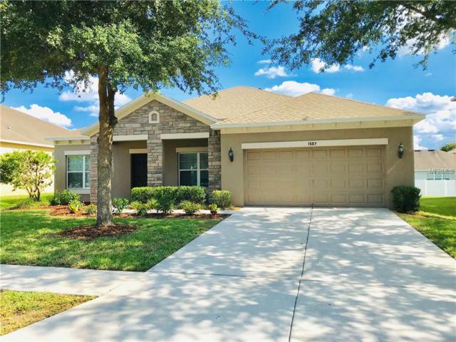 1507 Rhodeswell Lane, Dover, FL 33527 (MLS #T3176509) :: Team Bohannon Keller Williams, Tampa Properties