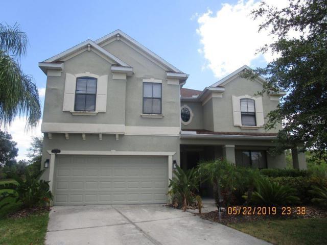 11150 Ancient Futures Drive, Tampa, FL 33647 (MLS #T3176523) :: Team Bohannon Keller Williams, Tampa Properties