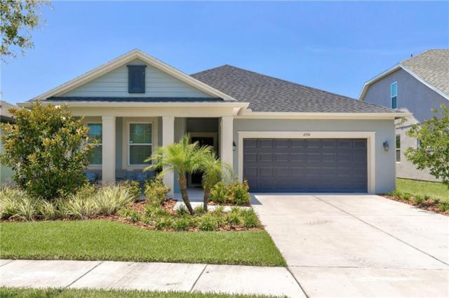 6534 Park Strand Drive, Apollo Beach, FL 33572 (MLS #T3176530) :: Dalton Wade Real Estate Group