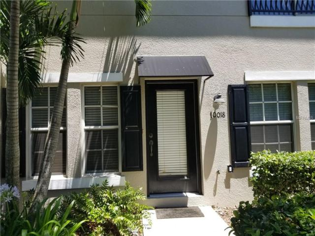 10018 Old Haven Way, Tampa, FL 33624 (MLS #T3176549) :: Welcome Home Florida Team