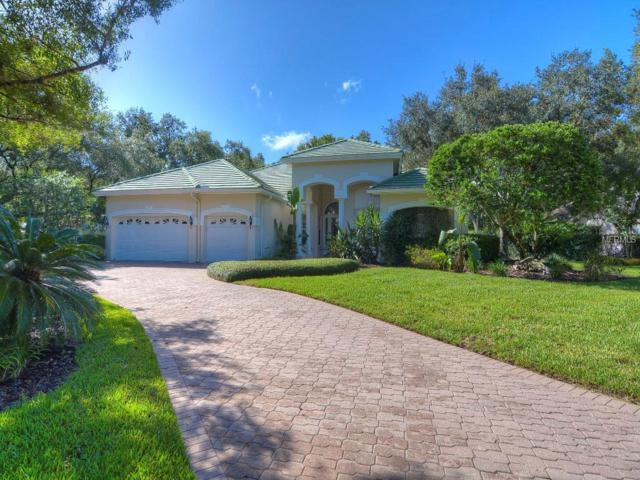 5001 Belmont Road, Tampa, FL 33647 (MLS #T3176550) :: Team Bohannon Keller Williams, Tampa Properties