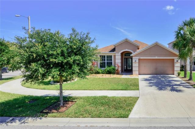 8714 Deep Maple Drive, Riverview, FL 33578 (MLS #T3176559) :: The Figueroa Team