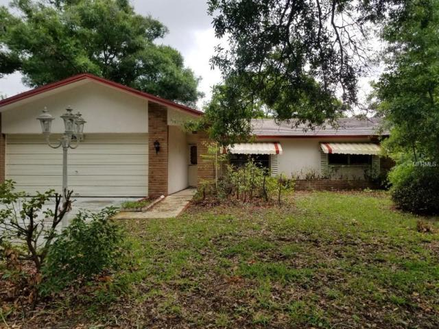 2851 Doone Circle, Palm Harbor, FL 34684 (MLS #T3176562) :: Jeff Borham & Associates at Keller Williams Realty