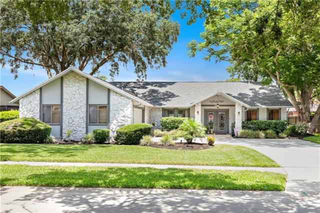 3385 Brian Road S, Palm Harbor, FL 34685 (MLS #T3176563) :: Jeff Borham & Associates at Keller Williams Realty