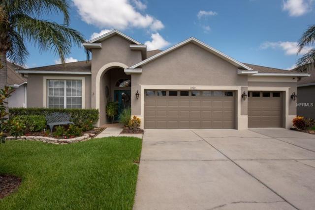 31307 Bridgegate Drive, Wesley Chapel, FL 33545 (MLS #T3176583) :: Team 54