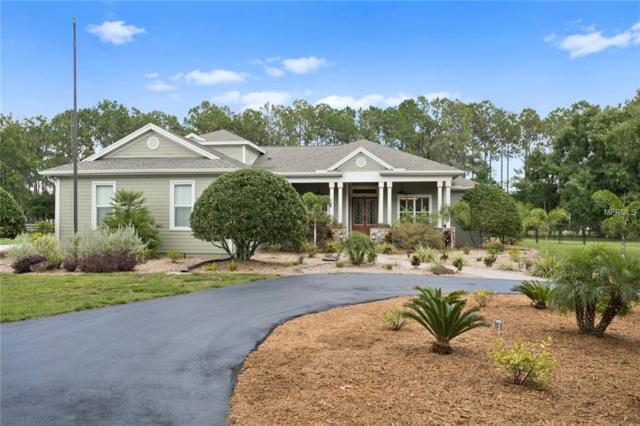 16107 Copeland Farms Road, Odessa, FL 33556 (MLS #T3176584) :: The Nathan Bangs Group