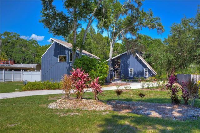 18823 5TH Street SW, Lutz, FL 33548 (MLS #T3176586) :: Team Bohannon Keller Williams, Tampa Properties