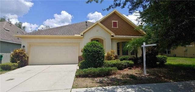 15816 Starling Water Drive, Lithia, FL 33547 (MLS #T3176591) :: The Duncan Duo Team
