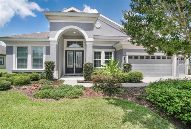 8343 Swiss Chard Circle, Land O Lakes, FL 34637 (MLS #T3176592) :: The Duncan Duo Team