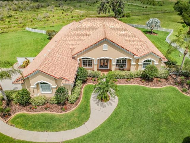 16616 Sounding Shores Drive, Odessa, FL 33556 (MLS #T3176594) :: The Nathan Bangs Group