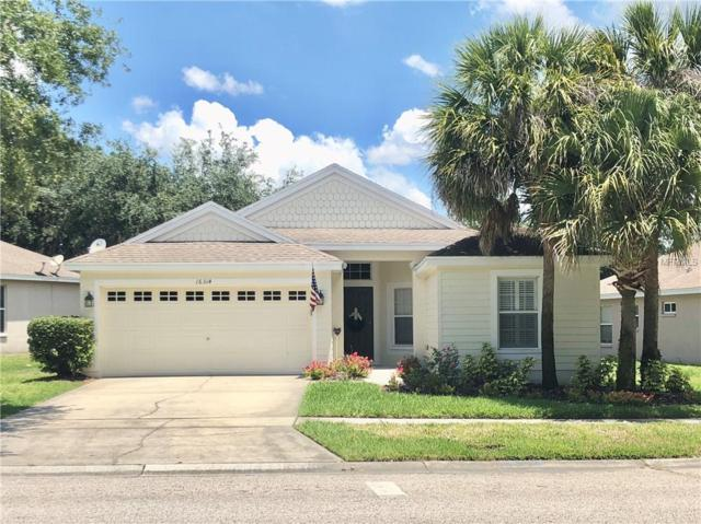 16314 Dorman Road, Lithia, FL 33547 (MLS #T3176602) :: The Duncan Duo Team