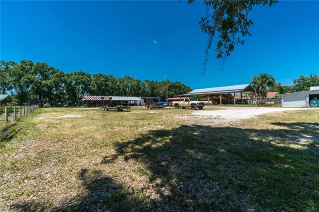 19620 Crescent Road, Odessa, FL 33556 (MLS #T3176609) :: Team Bohannon Keller Williams, Tampa Properties