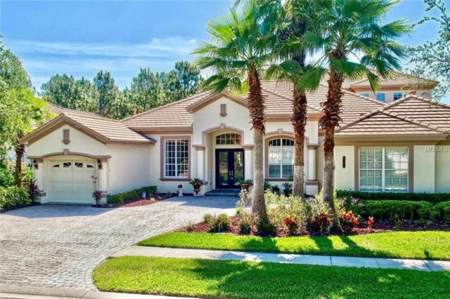 20103 Oak Alley Drive, Tampa, FL 33647 (MLS #T3176640) :: Team Bohannon Keller Williams, Tampa Properties