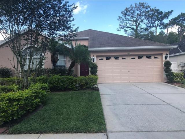 13423 Staghorn Road, Tampa, FL 33626 (MLS #T3176646) :: The Duncan Duo Team