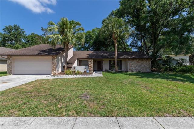 1032 Sylvia Lane, Tampa, FL 33613 (MLS #T3176663) :: Bustamante Real Estate