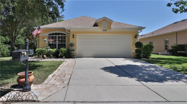 11445 Bathgate Court, New Port Richey, FL 34654 (MLS #T3176699) :: The Duncan Duo Team