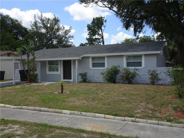 6462 Willow Wood Lane, Tampa, FL 33634 (MLS #T3176724) :: Bustamante Real Estate