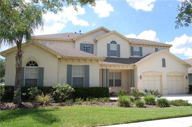 14802 Tudor Chase Drive, Tampa, FL 33626 (MLS #T3176727) :: The Duncan Duo Team