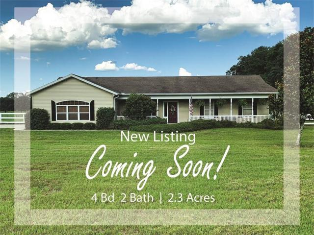 10016 Rudolph Lane, Zephyrhills, FL 33545 (MLS #T3176789) :: Premium Properties Real Estate Services