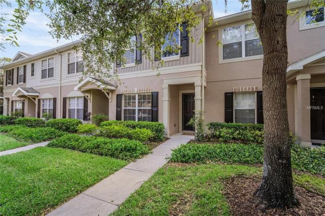 15827 Fishhawk Falls Drive, Lithia, FL 33547 (MLS #T3176799) :: KELLER WILLIAMS ELITE PARTNERS IV REALTY