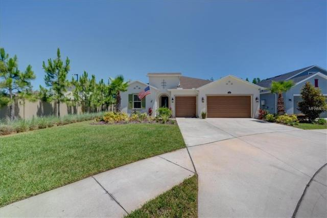 3719 Wicket Field Road, Lutz, FL 33548 (MLS #T3176807) :: Team 54