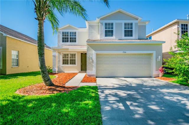 7708 Cedarhurst Lane, Tampa, FL 33625 (MLS #T3176824) :: The Nathan Bangs Group