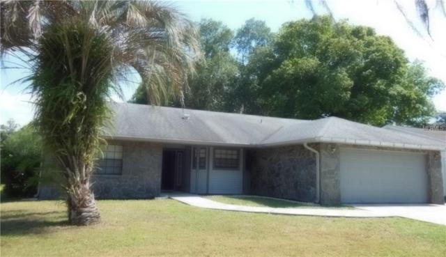 1001 Mallow Way, Brandon, FL 33510 (MLS #T3176834) :: The Nathan Bangs Group