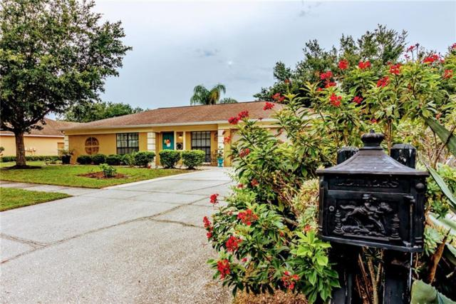 10301 Deepbrook Drive, Riverview, FL 33569 (MLS #T3176848) :: The Figueroa Team