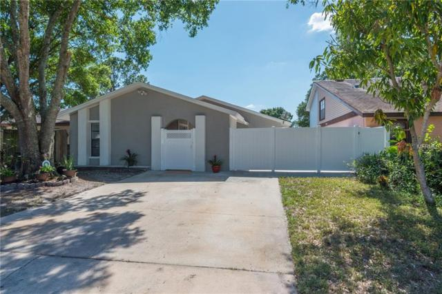10760 Glen Ellen Drive, Tampa, FL 33624 (MLS #T3176857) :: The Nathan Bangs Group