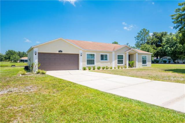 7120 Muck Pond Road, Dover, FL 33527 (MLS #T3176878) :: The Duncan Duo Team