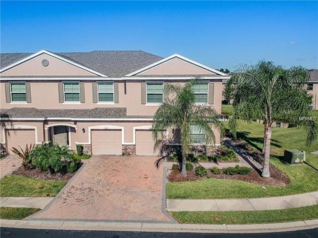 3805 Silverlake Way, Wesley Chapel, FL 33544 (MLS #T3177109) :: Bridge Realty Group