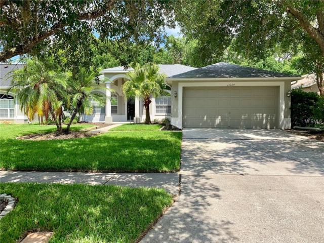 13024 Royal George Avenue, Odessa, FL 33556 (MLS #T3177243) :: The Duncan Duo Team