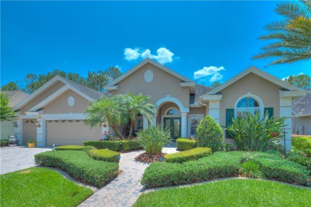 23410 Gracewood Circle, Land O Lakes, FL 34639 (MLS #T3177348) :: The Duncan Duo Team
