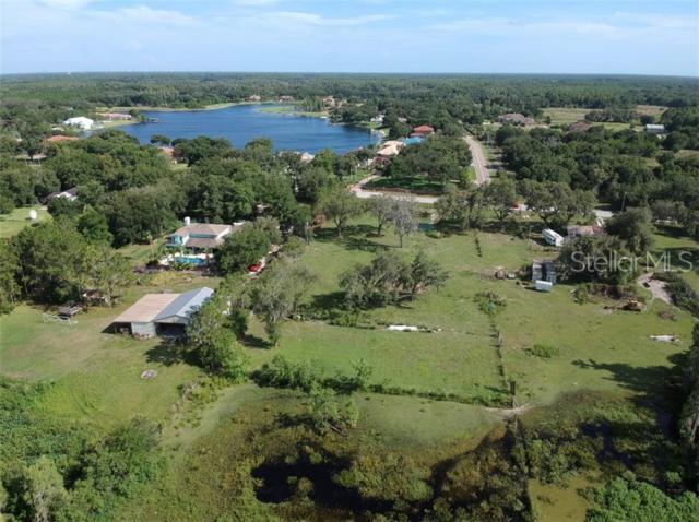 Tarpon Springs Road, Odessa, FL 33556 (MLS #T3177395) :: White Sands Realty Group