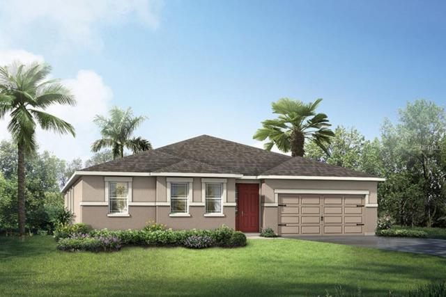 13270 Baby Belle Drive 65E, Riverview, FL 33579 (MLS #T3177573) :: The Duncan Duo Team