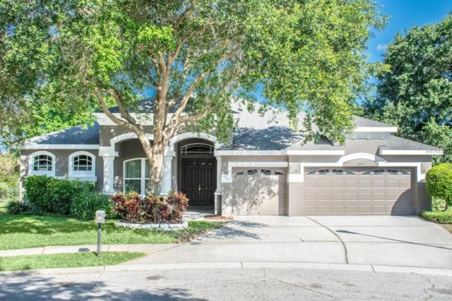 15217 Merlinpark Place, Lithia, FL 33547 (MLS #T3177658) :: The Duncan Duo Team