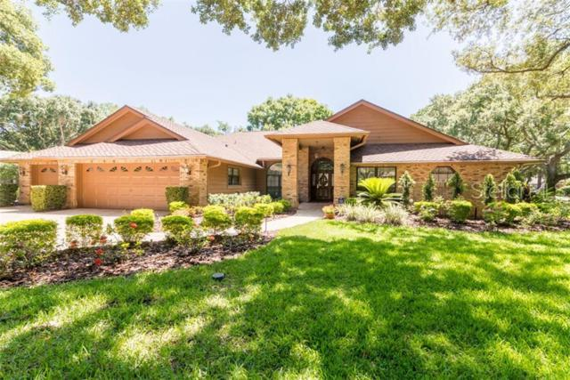 1432 Hounds Hollow Court, Lutz, FL 33549 (MLS #T3177717) :: Cartwright Realty