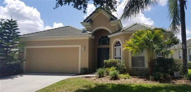 13240 Palmilla Circle, Dade City, FL 33525 (MLS #T3177721) :: Cartwright Realty