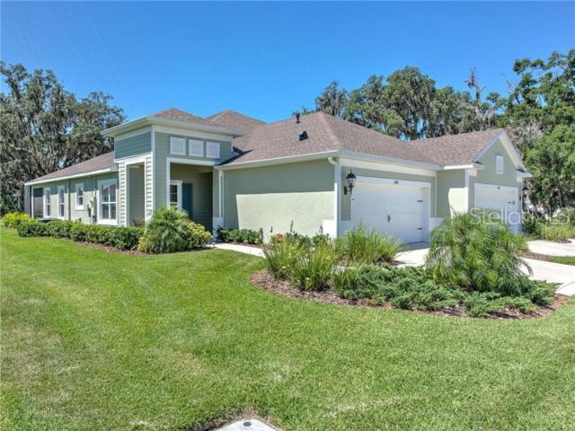 13607 Circa Crossing Drive, Lithia, FL 33547 (MLS #T3177825) :: Jeff Borham & Associates at Keller Williams Realty