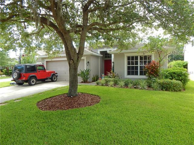 6431 Bridgecrest Drive, Lithia, FL 33547 (MLS #T3178022) :: Jeff Borham & Associates at Keller Williams Realty
