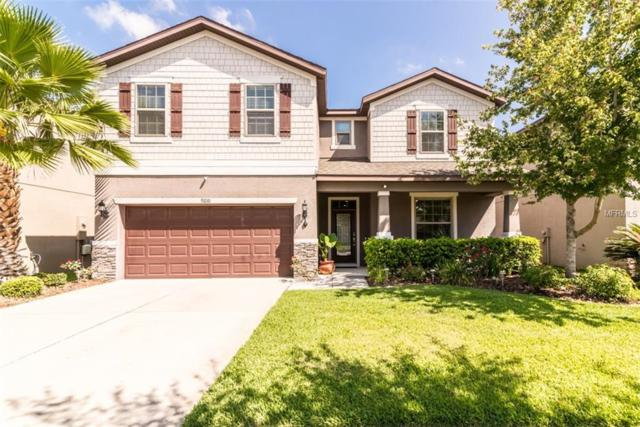 9210 European Olive Way, Riverview, FL 33578 (MLS #T3178046) :: The Duncan Duo Team