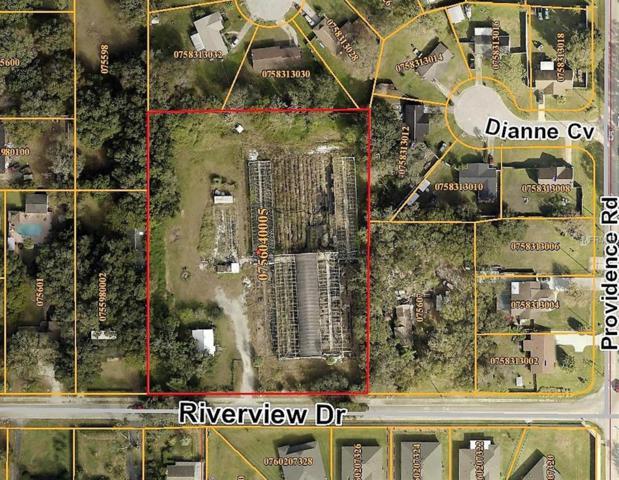 11010 Riverview Drive #1, Riverview, FL 33578 (MLS #T3178107) :: The Duncan Duo Team