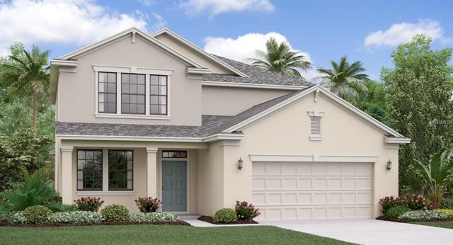 9706 Ivory Drive, Ruskin, FL 33573 (MLS #T3178335) :: The Duncan Duo Team