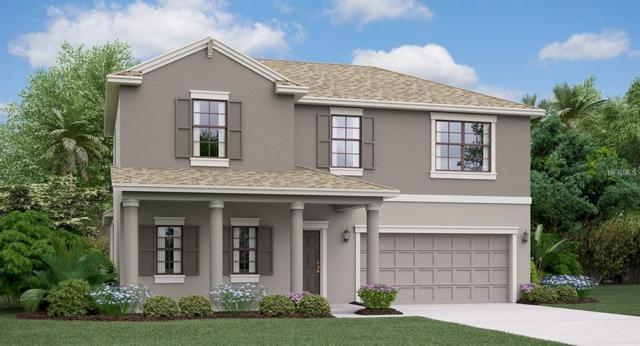 9668 Ivory Drive, Ruskin, FL 33573 (MLS #T3178337) :: The Duncan Duo Team