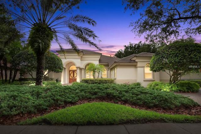 1208 Playmoor Drive, Palm Harbor, FL 34683 (MLS #T3178374) :: Delgado Home Team at Keller Williams